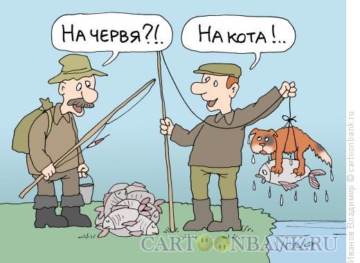 Карикатура: На кота, Иванов Владимир