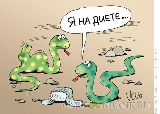 Карикатура: Диетический кролик, Иванов Владимир