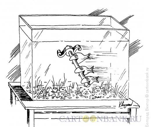 Карикатура: Аквариум, Богорад Виктор