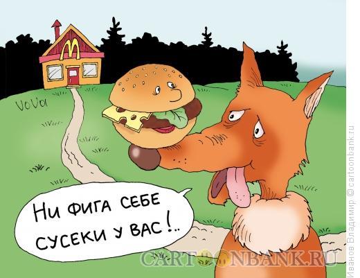 Карикатура: Сусеки, Иванов Владимир