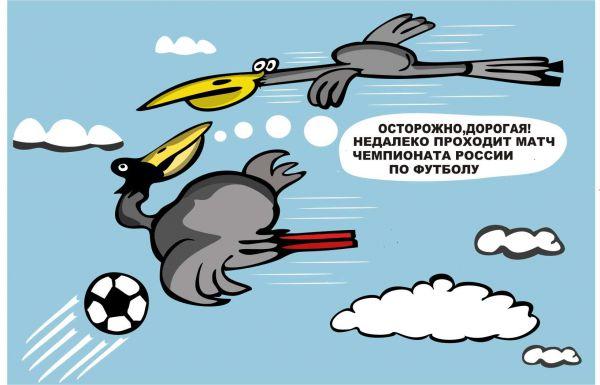 Карикатура: Прочие опасности перелетных птиц, somnambula