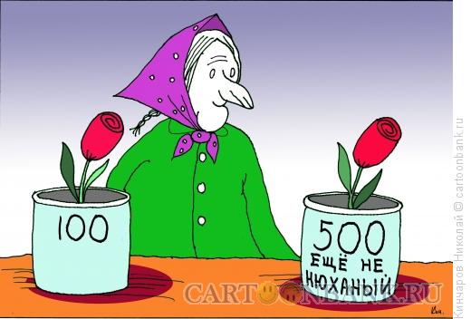 Карикатура: Бабка цветочница, Кинчаров Николай