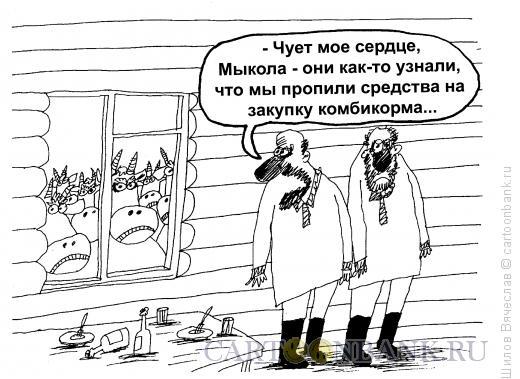 Карикатура: Недовольные коровы, Шилов Вячеслав