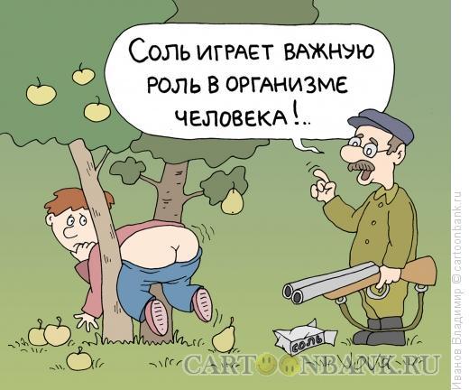 Карикатура: О пользе соли, Иванов Владимир