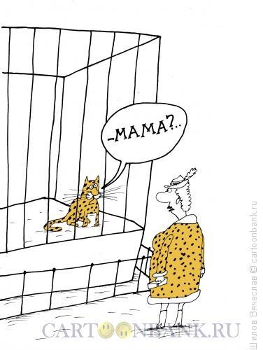 Карикатура: Мама?, Шилов Вячеслав