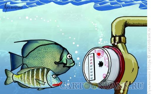 Карикатура: Рыбы и счётчик воды, Лукьянченко Игорь