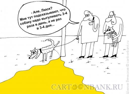 Карикатура: Выгул собаки, Шилов Вячеслав