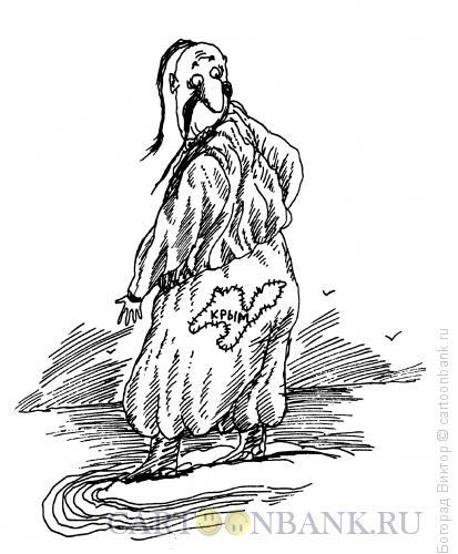 Карикатура: Заплатка, Богорад Виктор