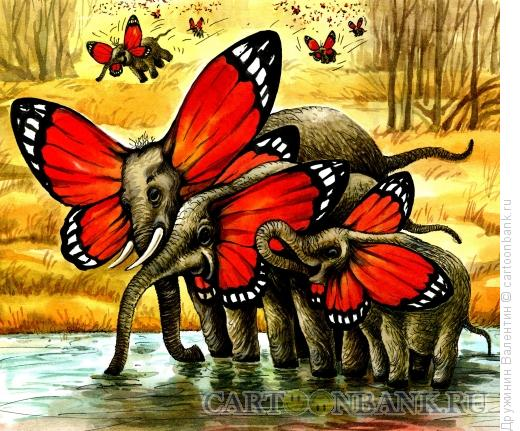 Карикатура: Слоны-бабочки, Дружинин Валентин