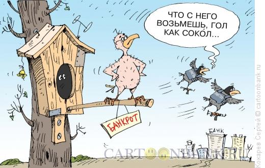 Карикатура: приставы, Кокарев Сергей