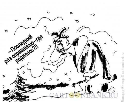 Карикатура: Допрос елки, Богорад Виктор