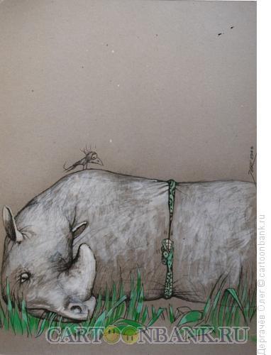 Карикатура: Охота на носорога, Дергачёв Олег