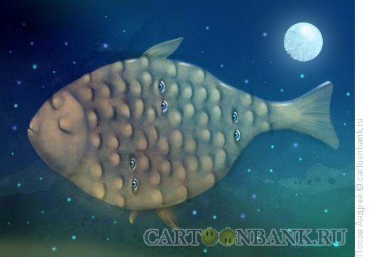 Карикатура: Рыба-ночь, Попов Андрей