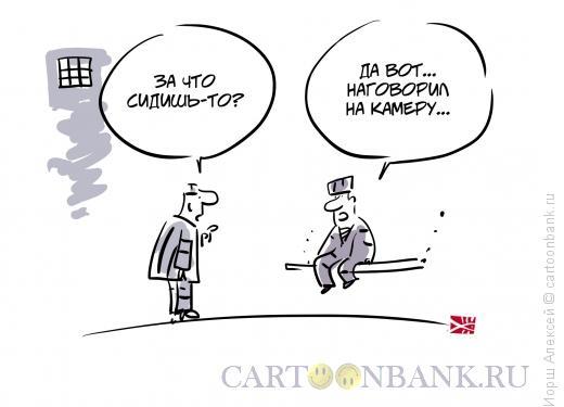 http://www.anekdot.ru/i/caricatures/normal/14/11/1/nagovoril-na-kameru.jpg
