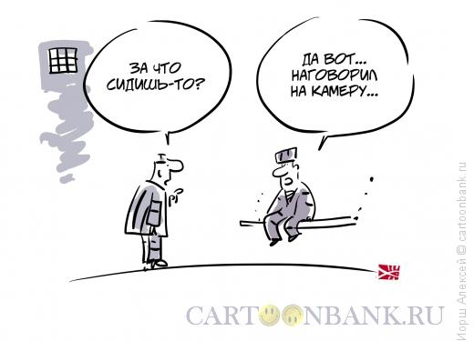 Карикатура: Наговорил на камеру, Иорш Алексей