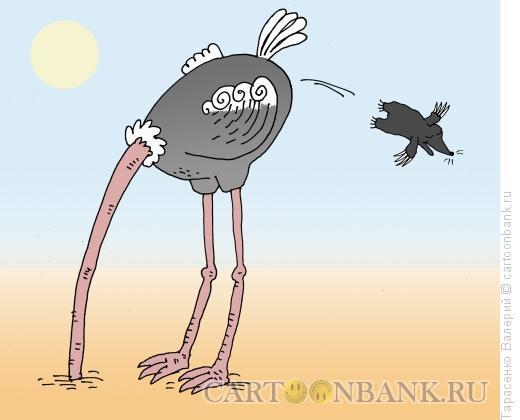 Карикатура: Симбиоз, Тарасенко Валерий