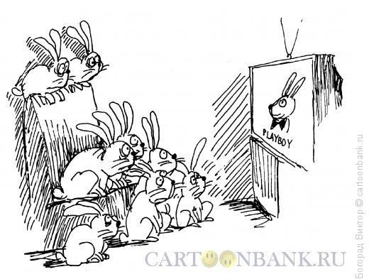 Карикатура: Добившийся успеха, Богорад Виктор