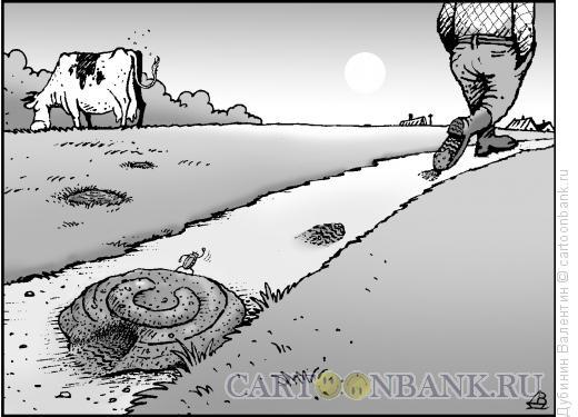 Карикатура: Нарушение права собственности, Дубинин Валентин