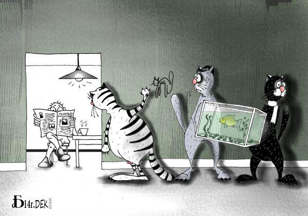 """Карикатура: Про """"Чёрную кошку"""", БАД"""