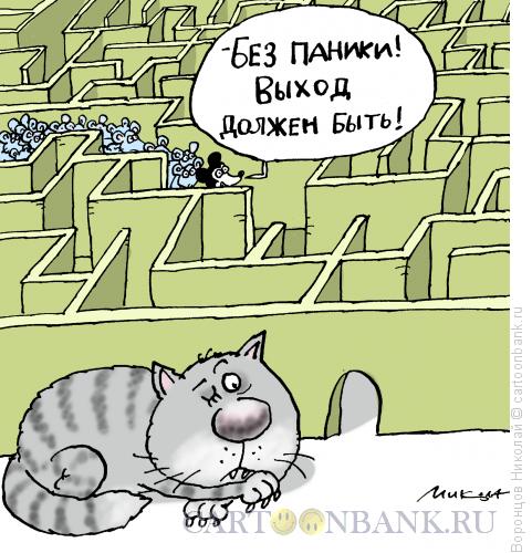 Карикатура: Выход, Воронцов Николай