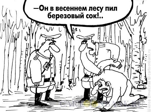 Карикатура: Березовый сок, Шилов Вячеслав