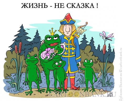 Карикатура: Жизнь-не сказка, Дубинин Валентин
