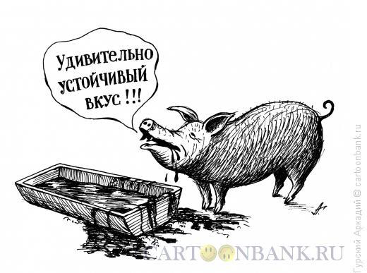 Карикатура: свинья у корыта, Гурский Аркадий