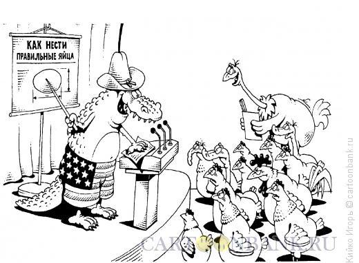 Карикатура: Правильные яйца, Кийко Игорь