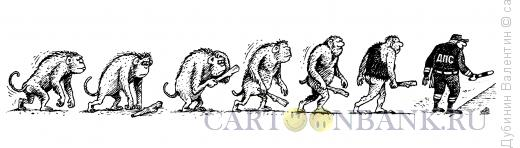 Карикатура: Эволюция, Дубинин Валентин