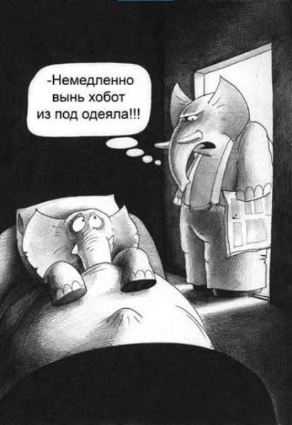 Карикатура: Хобот, Сергей Корсун
