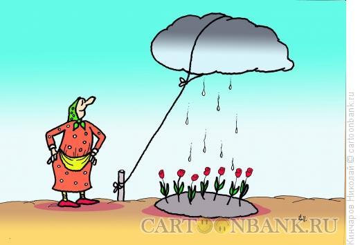 Карикатура: Бабка и клумба, Кинчаров Николай