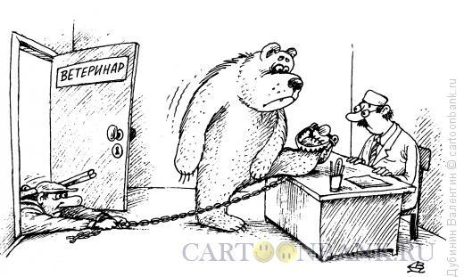 Карикатура: Медведь у ветеринара, Дубинин Валентин
