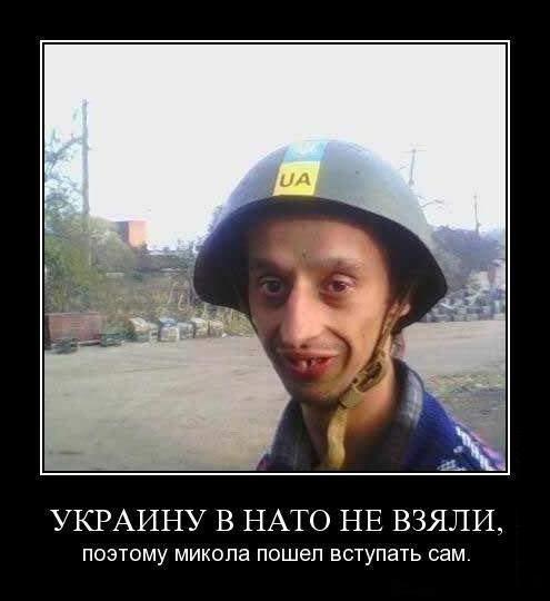 Карикатура: Элитные войска, Петро Стаценко