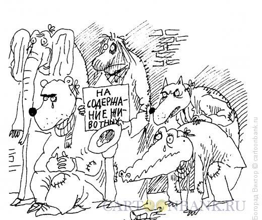 Карикатура: Содержание животных, Богорад Виктор
