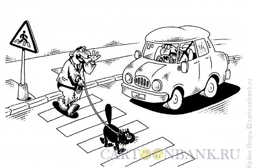 Карикатура: Безопасный переход, Кийко Игорь