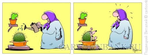 Карикатура: Кактус-еж, Подвицкий Виталий