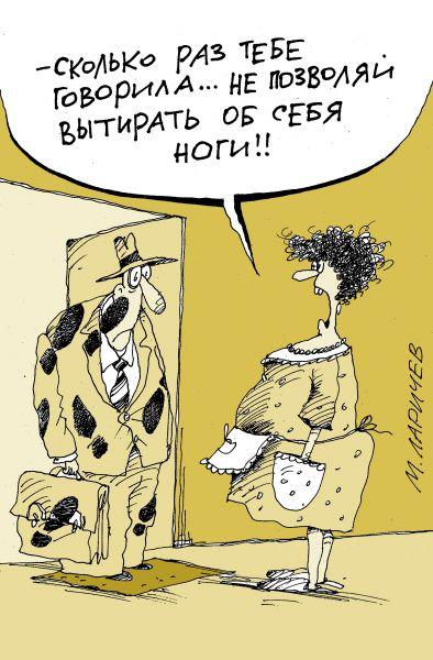 Карикатура: тряпка, михаил ларичев