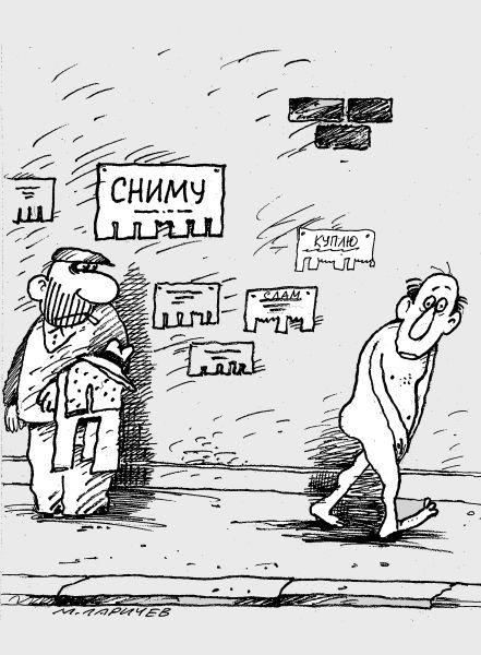 Карикатура: сниму, михаил ларичев