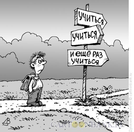 Карикатура: Выбор, Дубинин Валентин