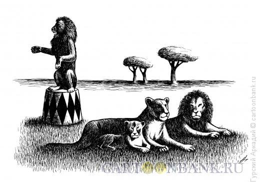 Карикатура: львы, Гурский Аркадий