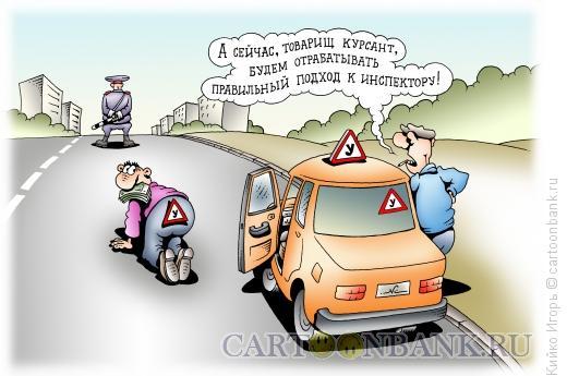 Карикатура: Правильный подход, Кийко Игорь