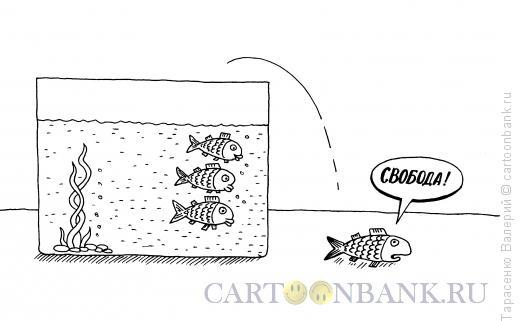 http://www.anekdot.ru/i/caricatures/normal/14/6/2/akvarium.jpg