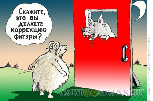Карикатура: Коррекция фигуры, Кинчаров Николай