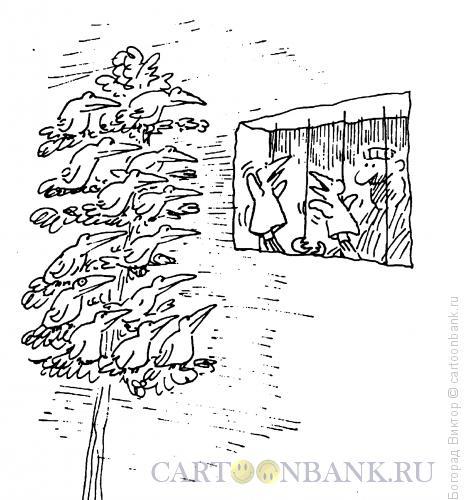 Карикатура: Представление, Богорад Виктор
