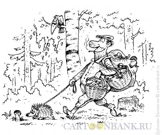 Карикатура: Грибник, Дубинин Валентин