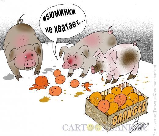 Карикатура: Специалисты по апельсинам, Зеленченко Татьяна