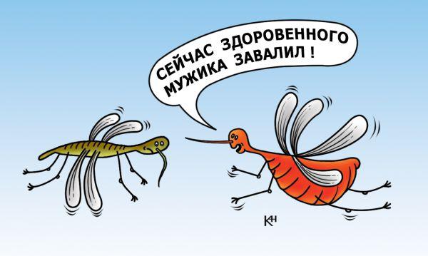 Карикатура: Комар хвавстун, Александр Кузнецов