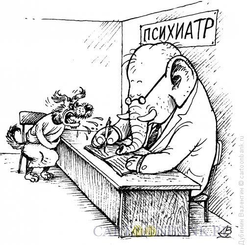 Карикатура: Моська в психушке, Дубинин Валентин
