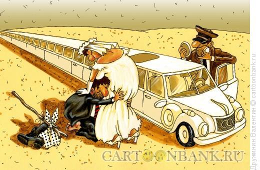 Карикатура: Длинный лимузин, Дружинин Валентин