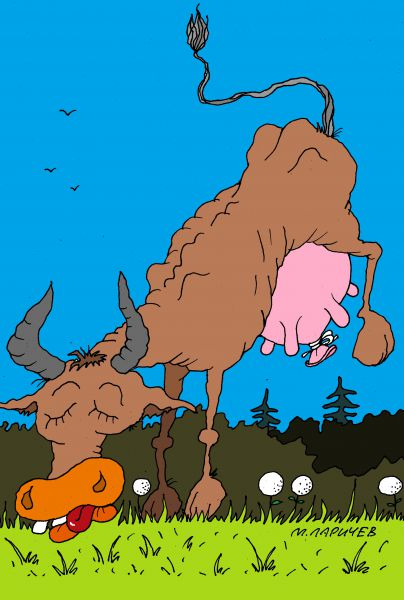 Карикатура: одуванчики, михаил ларичев
